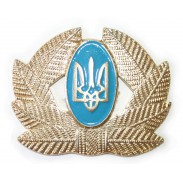 Army Private, Sergeant, Warrant officer Hat / Cap / Beret Badge #1