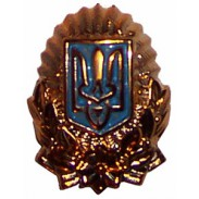 Ukrainian National Guard / Police Hat / Cap / Beret Badge. Old model
