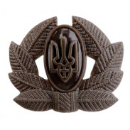 Army Private, Sergeant, Warrant officer Hat / Cap / Beret Subdued Badge