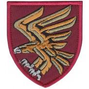 95th Separate Air Assault Brigade Patch 2019