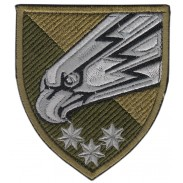 25th Separate Air Assault Brigade Patch 2019