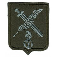 The 6-th Separete Mechanized Brigade in Iraq Subdued Patch