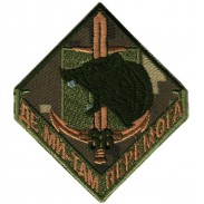 36th separate brigade Subdued Patch of Ukrainian Marine Infantry