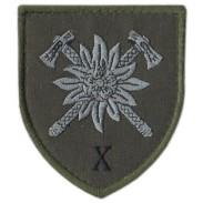 10th mountain Assault Brigade, Subdued Velcro Patch. Ukraine 2019