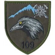 109th Separate Mountain Assault Battalion, Subdued Velcro Patch. Ukraine 2019