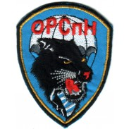 670th separate company Special Purpose Main Intelligence Directorate of the General Staff RUSSIA