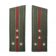 Shoulder straps of the Soviet Army USSR Capt.