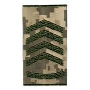 Third Sergeant Ukraine Army Combat Slide Epaulet