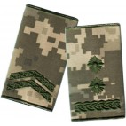 Ukraine Combat Slide Epaulets 2017 NEW